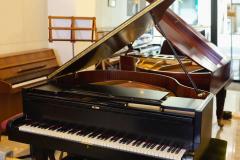 PIANOFORTI-OLDANI-Novara-029-908w