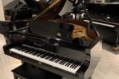 PIANOFORTI-OLDANI-Novara-030-908w